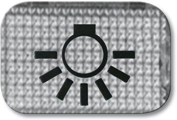 Busch-Jaeger 2145 LI Tastersymbol, transparent Licht