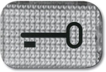Busch-Jaeger Tastersymbol, transparent 2145 TR, glasklar