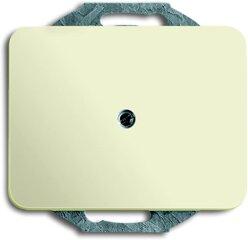 Busch-Jaeger Blindzentralscheibe 1742-22G, elfenbein/weiß