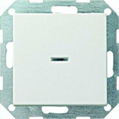 Gira 013601 Tast-Kontrollschalter CW