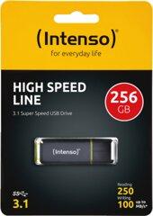 Intenso High Speed Line 256GB USB 3.1