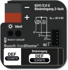 Busch-Jaeger Binäreingang 2-fach, UP 6241/2.0 U