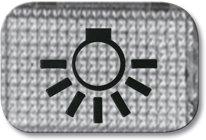 Busch-Jaeger Tastersymbol, transparent 2145 LI, glasklar